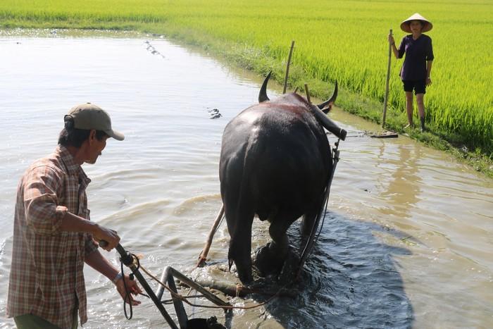 4--voyage Vietnam-fév 2020 - Jour9